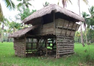 Abandoned kubo in Toril, Samal Island
