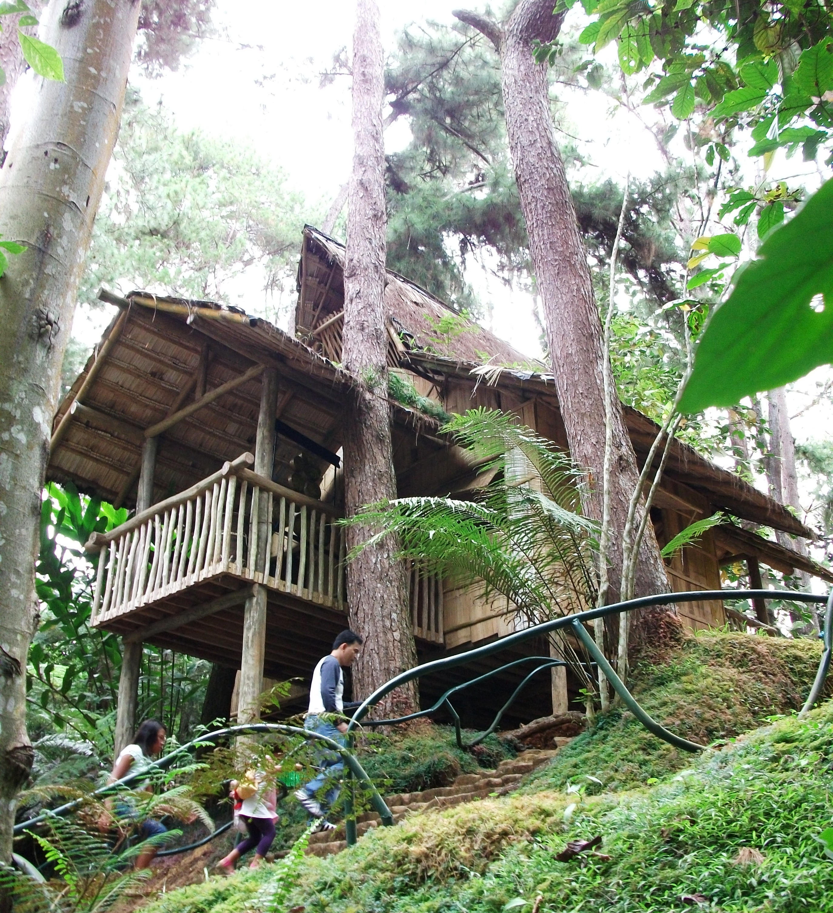 Philippines Native House Designs And Floor Plans also Bahay Kubo How To Do It further The Reality About Building With Bamboo additionally Nipa Hut Village in addition Nipa House. on hut nipa house design philippines