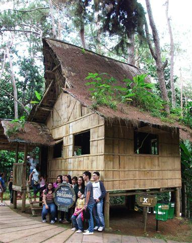 Bahay Kubo Designs